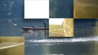 Random Sequence Transition for Final Cut Pro X by Sight-Creations