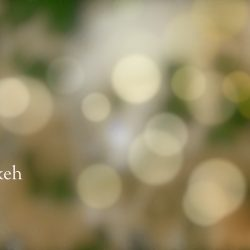 SC Bokeh feature image
