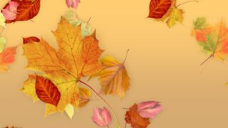 Leaves - Fall Title for FCPX