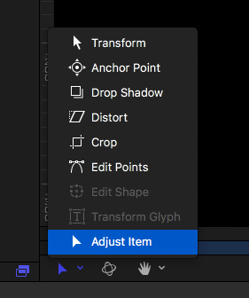 Adjust Item detail