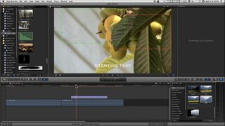 ZPR - Zoom Pan Return Title for FCPX