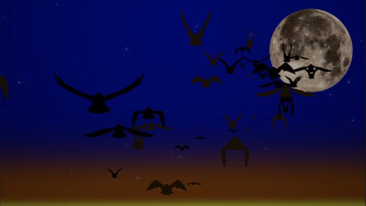 Ravens! Generator gallery